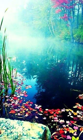 Misty Pond, Stowe, Vermont