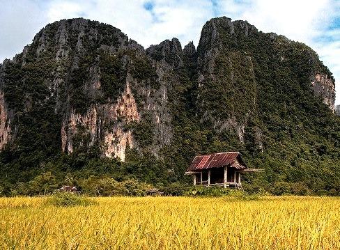 Hut in a paddy field, Vang Vieng, Laos