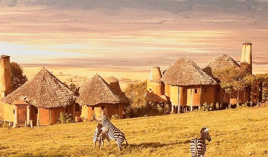 Zebras at Ngorongoro Crater Lodge, Tanzania